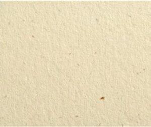 дизайнерський картон Flora avorio