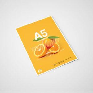Флаера А5