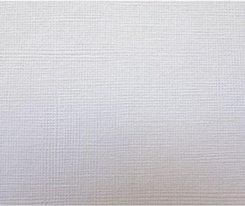 Дизайнерський папір Icelite canvas 1s