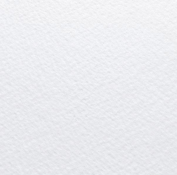 Дизайнерський папір Tintoretto gesso